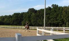 Ośrodek Jeździecki Łoś