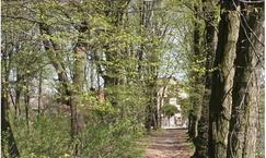Park krajobrazowy w Woli Pniewskiej
